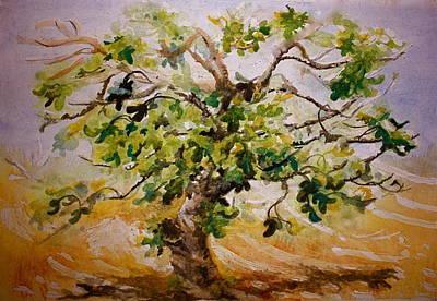 Fig Tree Original by Yvonne Ayoub