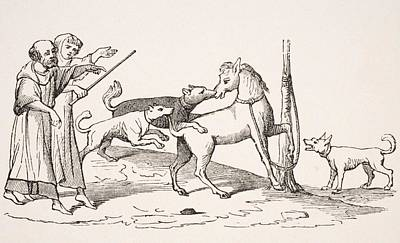 Fight Between Horses And Dogs. 19th Art Print by Vintage Design Pics