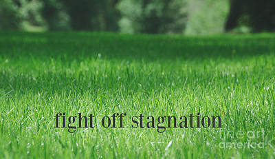 Photograph - Fight Off Stagnation by Andrea Anderegg
