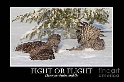 Fight Or Flight Art Print