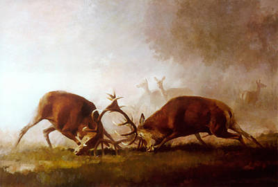 Painting - Fighting Stags II. by Attila Meszlenyi
