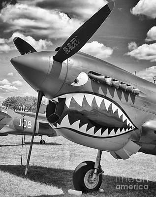 Photograph - Fighting Tiger by Ricky L Jones