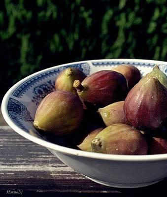 Photograph - Figs by Marija Djedovic