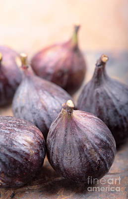 Blue Fig Photograph - Figs by Neil Overy