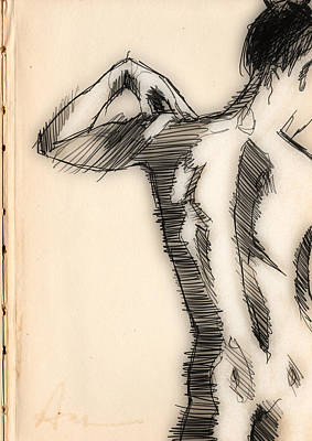 Figure Study Drawing - Figure Study by H James Hoff