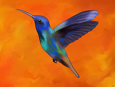 Colibri Art Painting - Figurieros V1 - Colourful Colibri by Cersatti