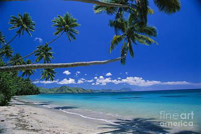 Photograph - Fiji, Kadavu Island by Ron Dahlquist - Printscapes