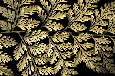 Photograph - Filigree Fern Gold by Jessica Jenney