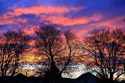 Painting - Filigree Sunset by Nareeta Martin