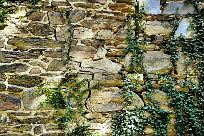 Photograph - Filling The Cracks by JAMART Photography