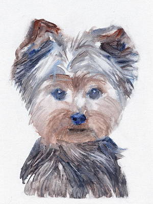 Yorkshire Terrier Watercolor Painting - Fillmore by Kazumi Whitemoon