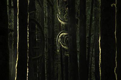 Photograph - Final Light In Woods by Adam Gibbs