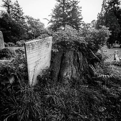 Photograph - Final Resting Place by Marvin Borst