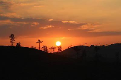 Tea Tree Photograph - Final Sunset, Valparai by Jennifer Mazzucco