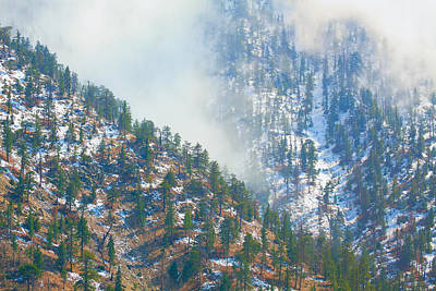 Photograph - Let It Snow by Ram Vasudev