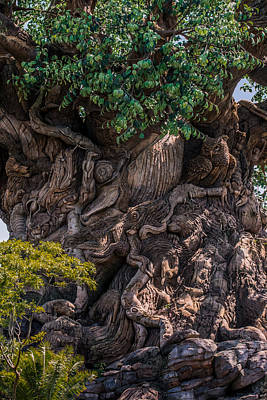 Disney Photograph - Find Animals... by Zina Stromberg