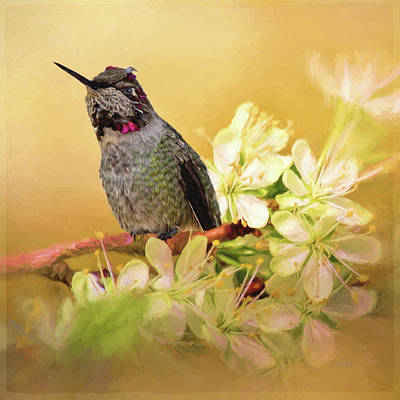 Painting - Find Joy - Hummingbird Art by Jordan Blackstone