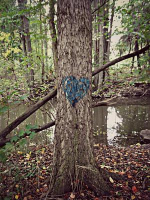 Photograph - Find Something To Love by Cyryn Fyrcyd