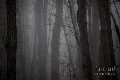Photograph - Find The Light. Always by Angie Rea