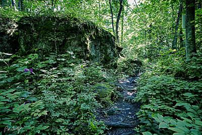 Finding A Path Home Original