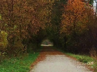 Photograph - Finding The Way by J L Zarek