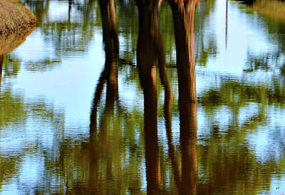 Fine Art Photography - Reflections Art Print by Gerlinde Keating - Galleria GK Keating Associates Inc