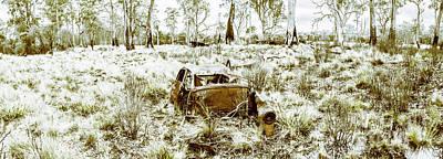 Carcass Photograph - Fine Art Tasmania Bushland by Jorgo Photography - Wall Art Gallery