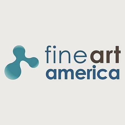 Photograph - Fine Art America by Sheila Mcdonald