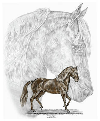 Kelli Drawing - Fine Steps - Paso Fino Horse Print Color Tinted by Kelli Swan