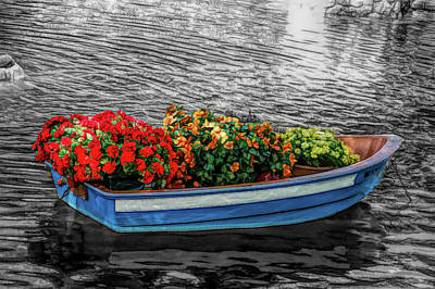 Flower Photograph - Fine Wine Cafe Boat Parade by Aimee L Maher Photography and Art Visit ALMGallerydotcom