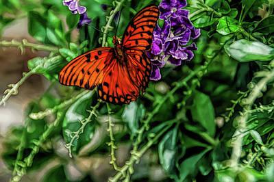 Photograph - Fine Wine Cafe Orange Beauty by Aimee L Maher Photography and Art Visit ALMGallerydotcom