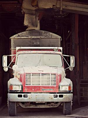 Photograph - Finely Dusted by Cyryn Fyrcyd