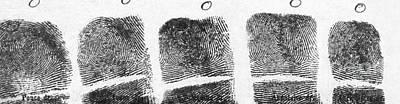 Photograph - Fingerprints Of Vincenzo Peruggia, Mona by Photo Researchers