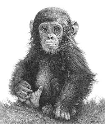 Cute Monkey Drawing - Fingers And Thumbs by Kevin Hayler