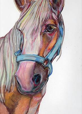 Horse Eye Drawing - Finished Horse by Anne Seay