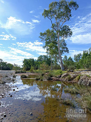Photograph - Finke River - Northern Territory by Phil Banks