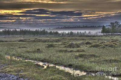 Fen Photograph - Finnish Moorland by Heiko Koehrer-Wagner