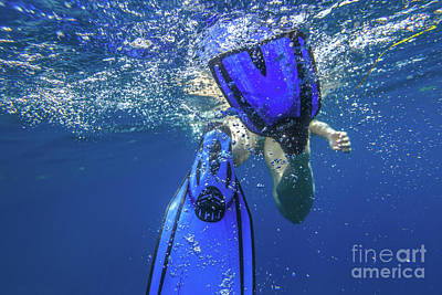 Photograph - Fins Snorkeler Under Water by Benny Marty