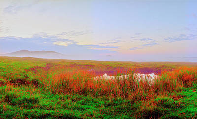 Photograph - Fionnphort Pond At Dusk by Jan W Faul