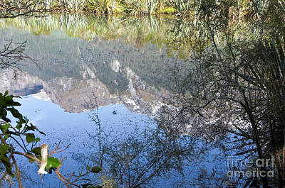 Photograph - Fiordland National Park. Mirror Lakes. New Zealand. by Yurix Sardinelly