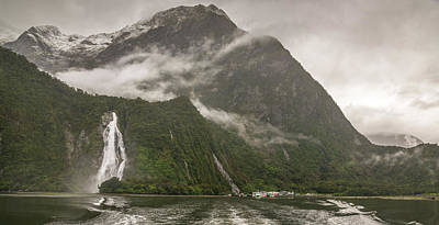 Photograph - Fiordland National Park by Racheal Christian