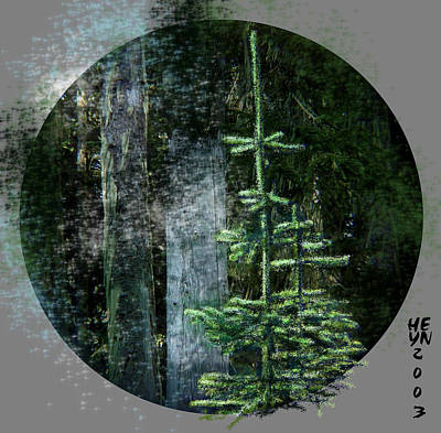 Fir Trees - 3 Ages Art Print