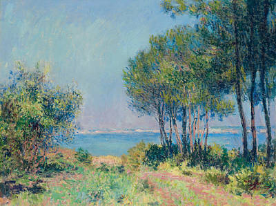 Sun And Tree Painting - Fir Trees At Varengeville by Claude Monet