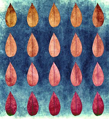 Photograph - Firangi Pani Leaf by Sumit Mehndiratta