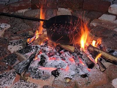 Photograph - Fire And Chestnut by Vesna Martinjak