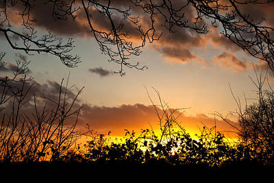 Photograph - Fire And Dusk by Stewart Scott