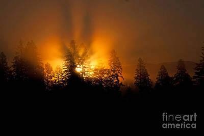 Photograph - Fire And Fog by Katie LaSalle-Lowery