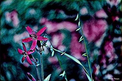 Digital Art - Fire Flower by Wesley Nesbitt