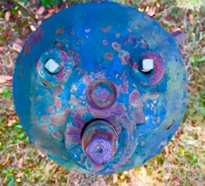 Photograph - Fire Hydrant # 11 by Suzanne Lorenz