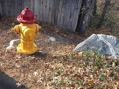 Photograph - Fire Hydrant Checking Its Facerock by Richard W Linford